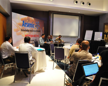 Arsenic Network Inception Workshop