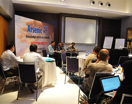 Arsenic Network Inception Workshop